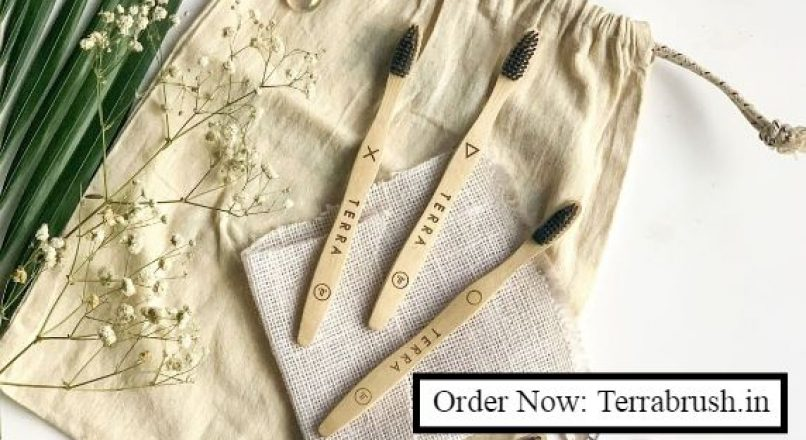 Bamboo Toothbrush Online – Terrabrush